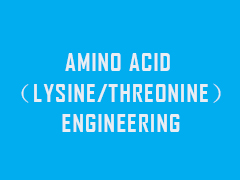 AMINO ACID (LYSINE/THREONINE)ENGINEERING